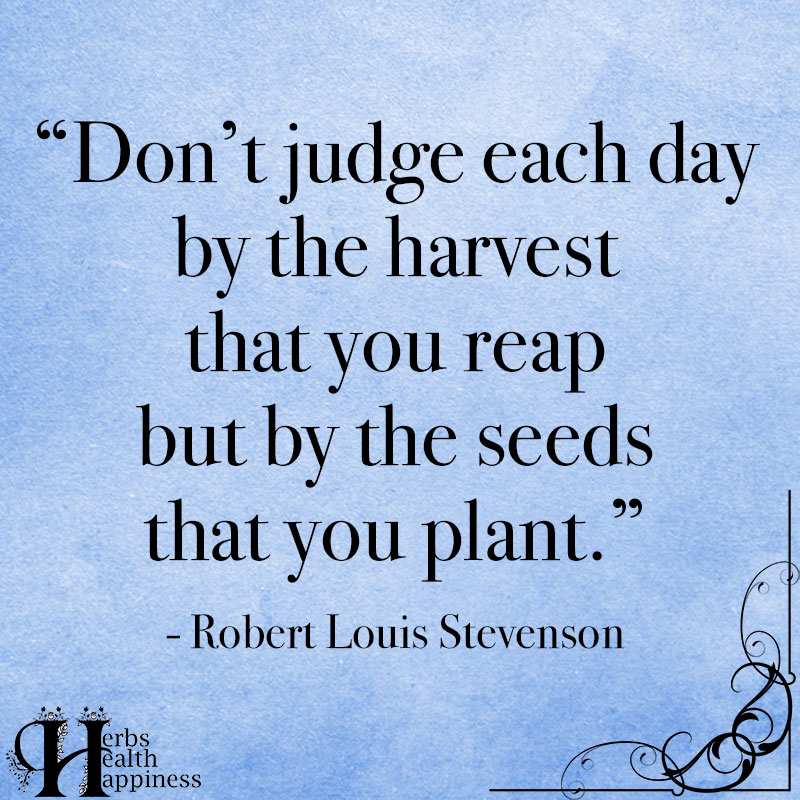 Dont Judge Each Day