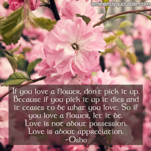 If you love a flower, ...
