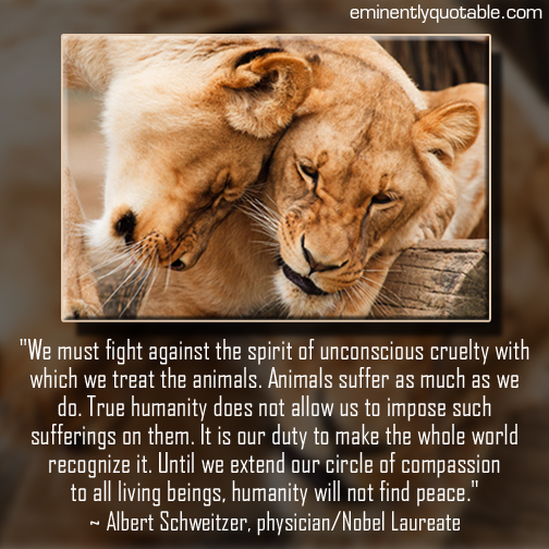 We must fight against the spirit of unconscious cruelty (animals)