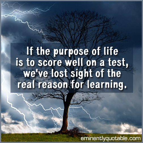 If the purpose of life is to score well on a test