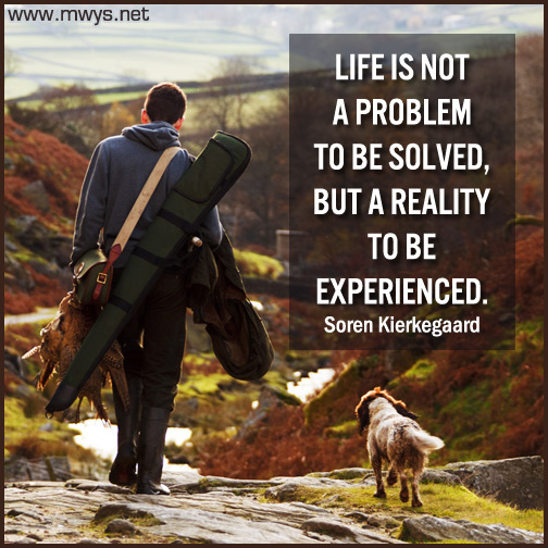 Life-is-not-a-problem-to-be-solved