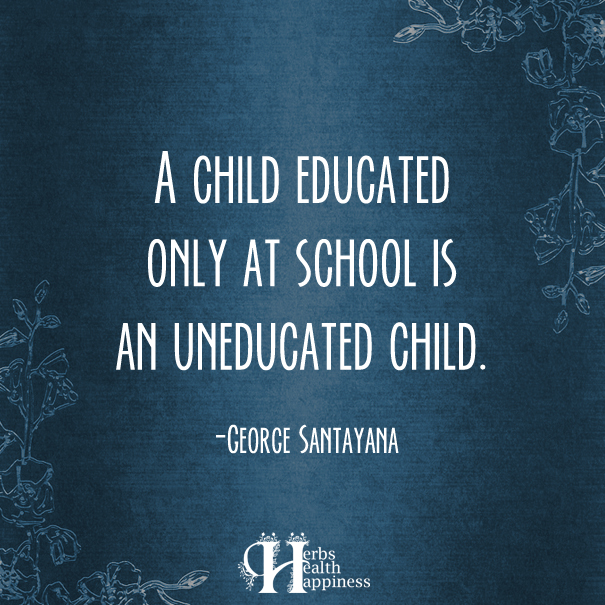 A-Child-Educated-Only-At-School-Is-An-Uneducated-Child
