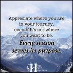Appreciate Where You Are In Your Journey