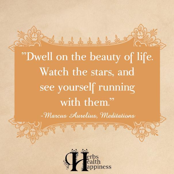 Dwell-on-the-beauty-of-life
