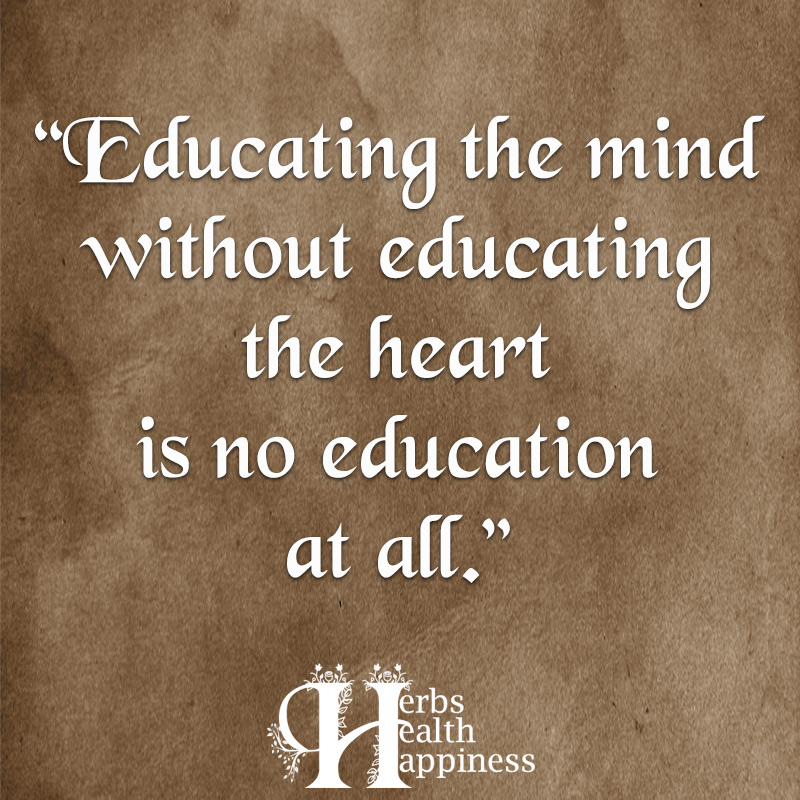 Educating The Mind Without Educating The Heart