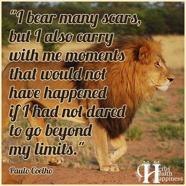 I-bear-many-scars