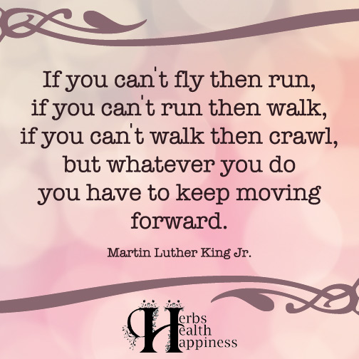 If you can't fly then run, if you can't run then walk