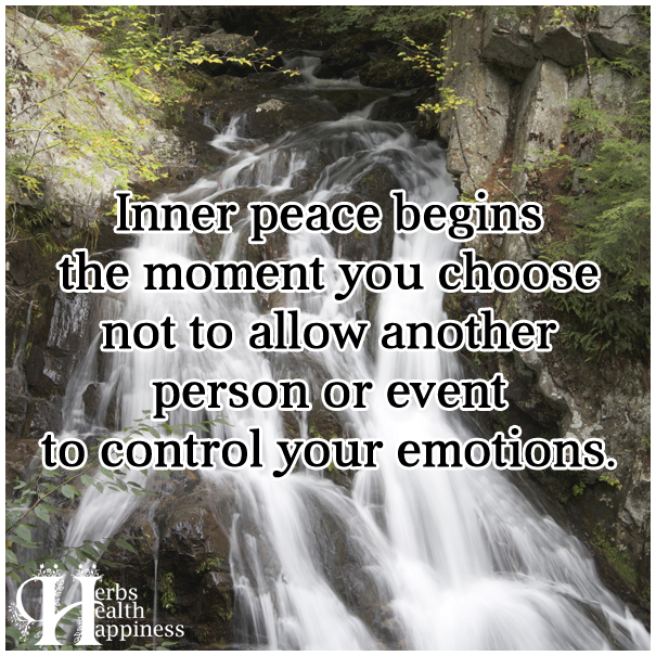 Inner-peace-begins-the-moment-you-choose