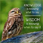 Knowledge Is Knowing What To Say