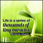 Life Is A Series Of Thousands Of Tiny Miracles