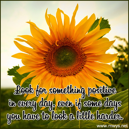Look-for-something-positive-in-every-day