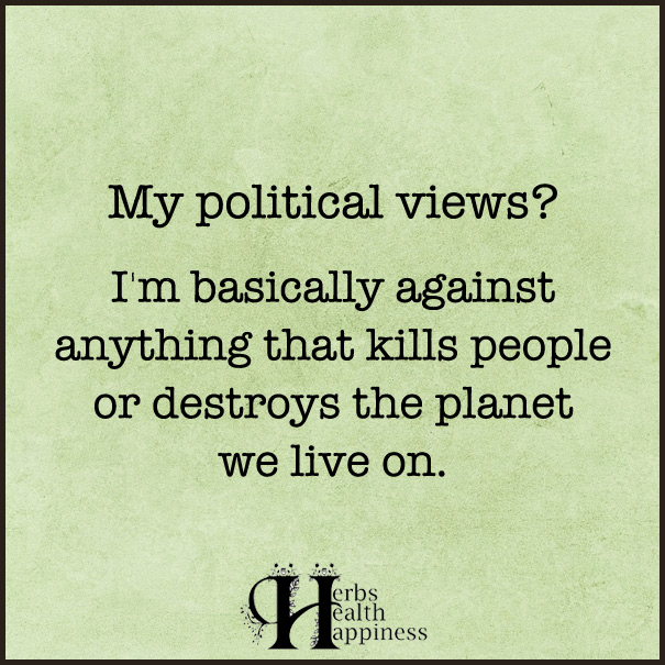 My-Political-Views