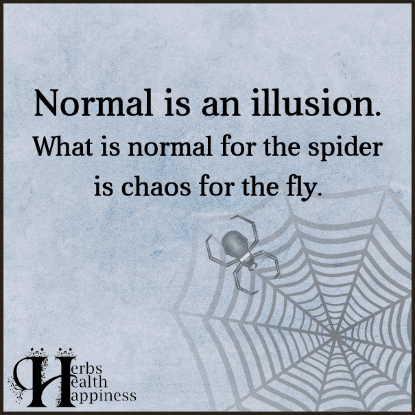 Normal is an illusion eminently quotable quotes funny normal is an illusion altavistaventures Choice Image