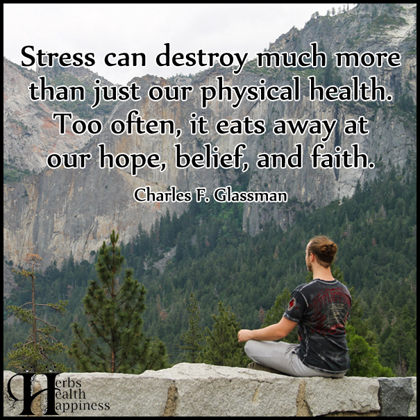 Stress-can-destroy-much-more-than-just-our-physical-health
