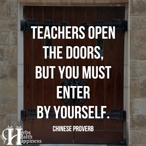 Teachers-open-the-doors,-but-you-must-enter-by-yourself