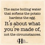 The Same Boiling Water That Softens The Potato Hardens The Egg