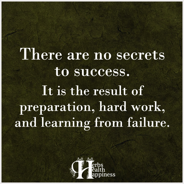 There-are-no-secrets-to-success