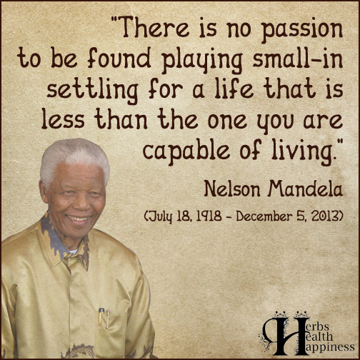 There-is-no-passion-to-be-found-playing-small-in-settling