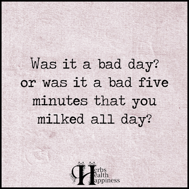 Was-it-a-bad-day-or-was-it-a-bad-five-minutes-that-you-milked-all-day