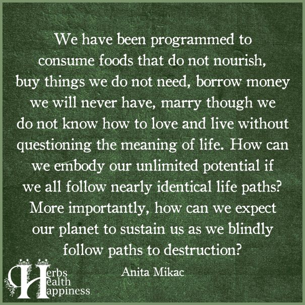 We-Have-Been-Programmed-To-Consume-Foods