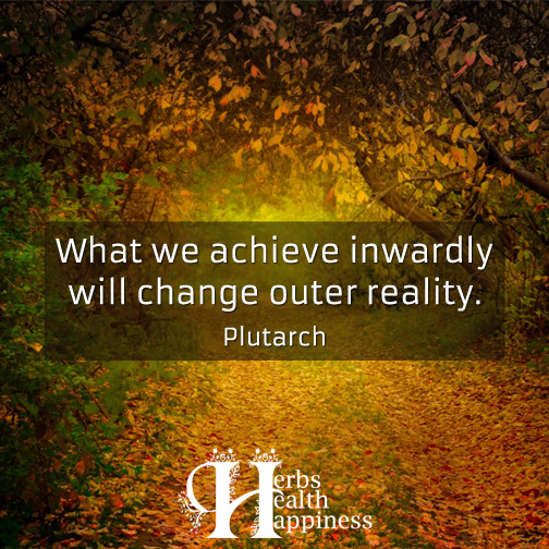 What-we-achieve-inwardly-will-change-outer-reality