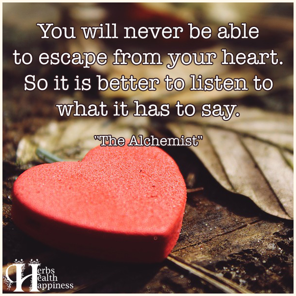 You-will-never-be-able-to-escape-from-your-heart