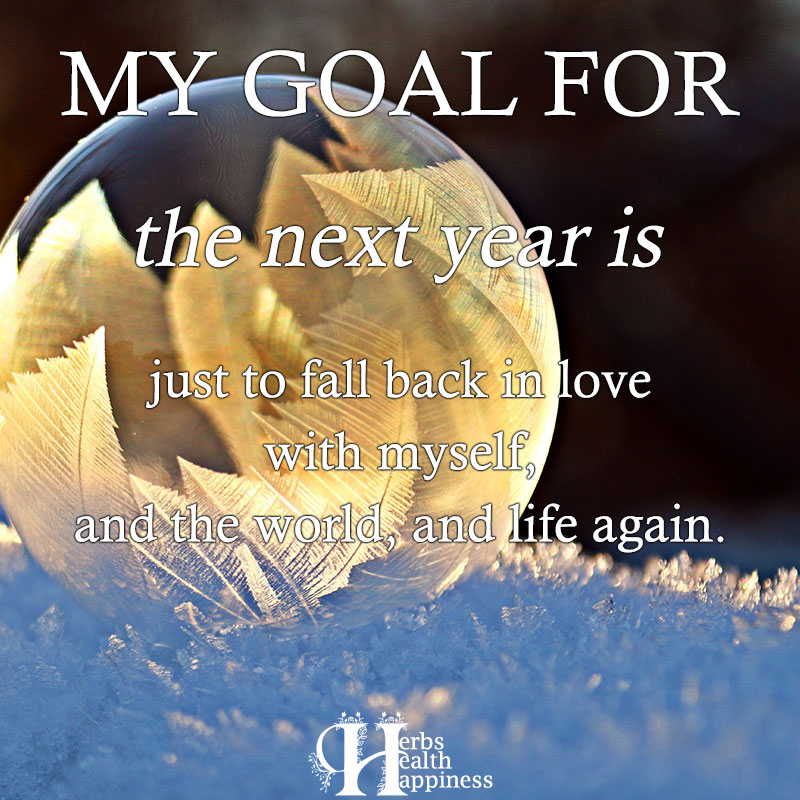 My Goal For The Next Year Is