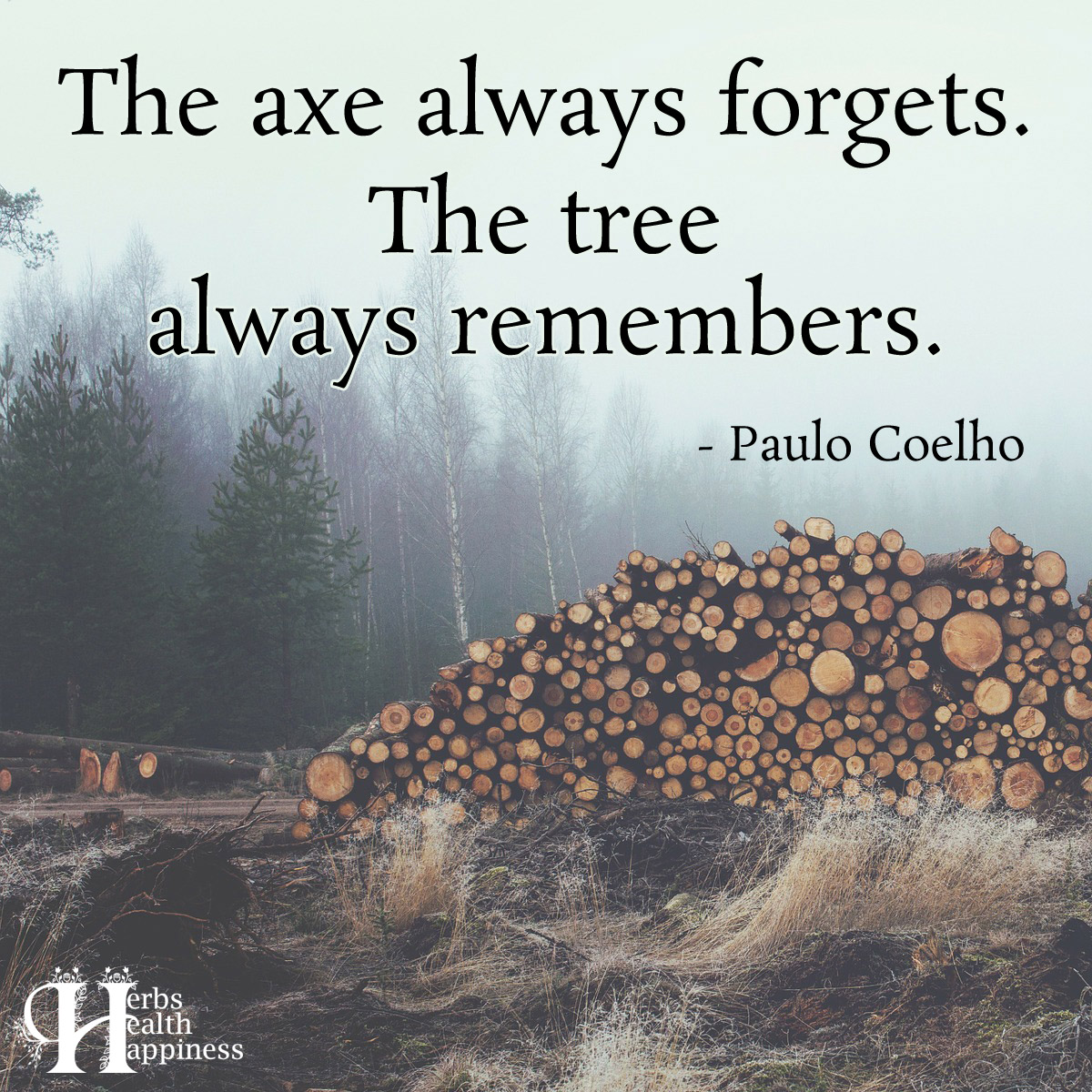 The Axe Always Forgets