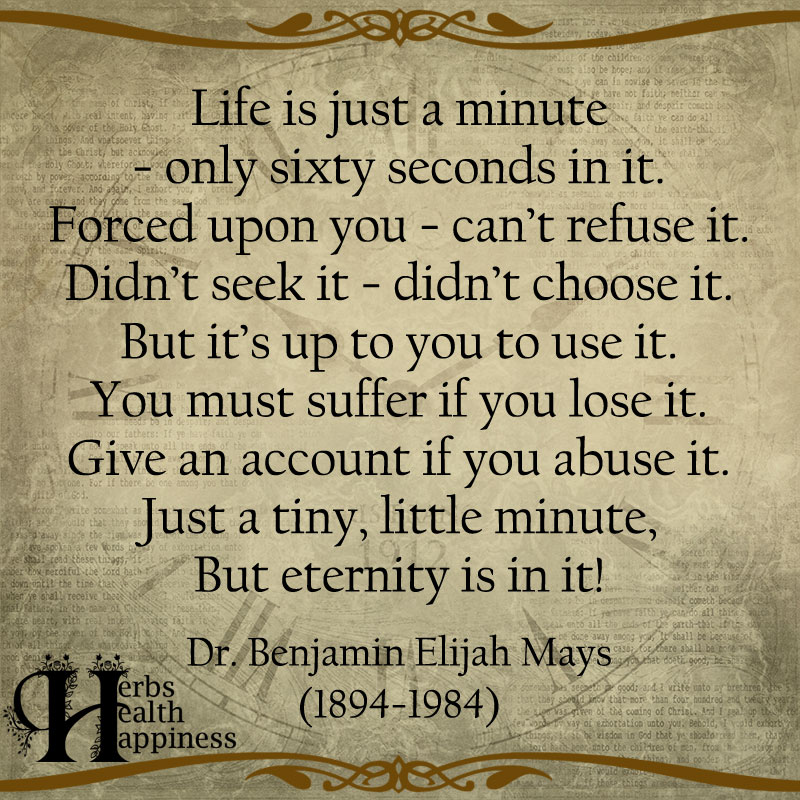 Life Is Just A Minute