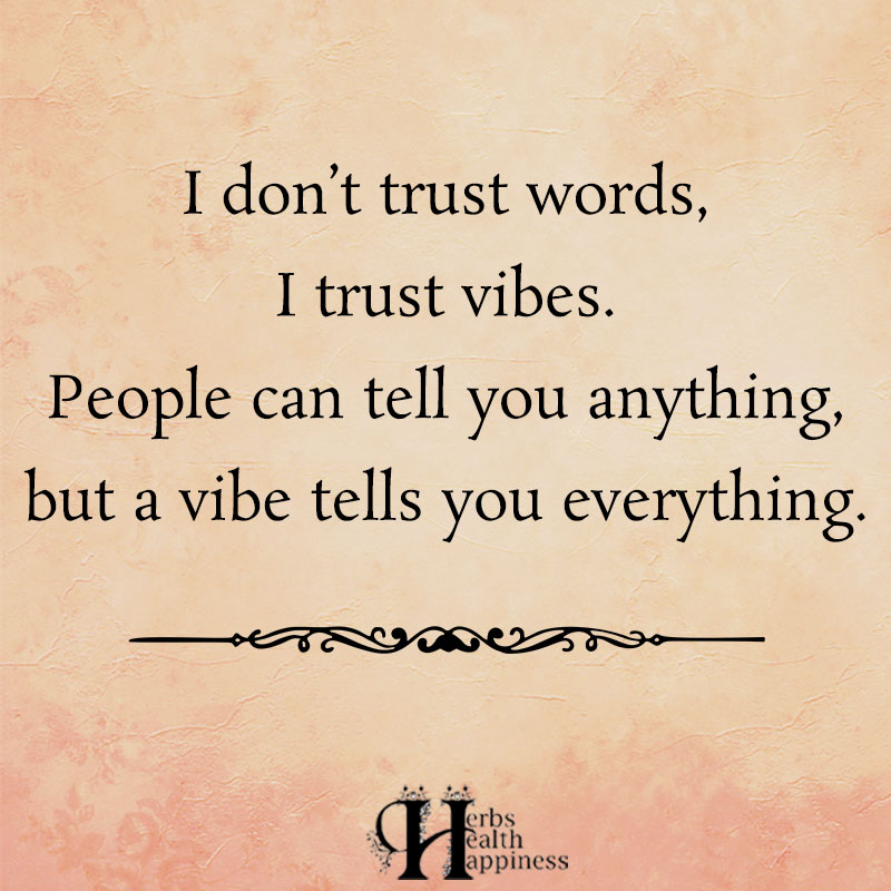 I Dont Trust Words I Trust Vibes