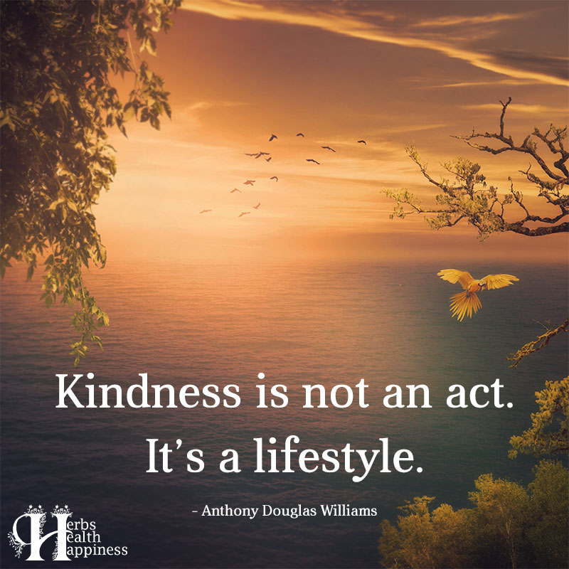 Kindness Is Not An Act Its A Lifestyle
