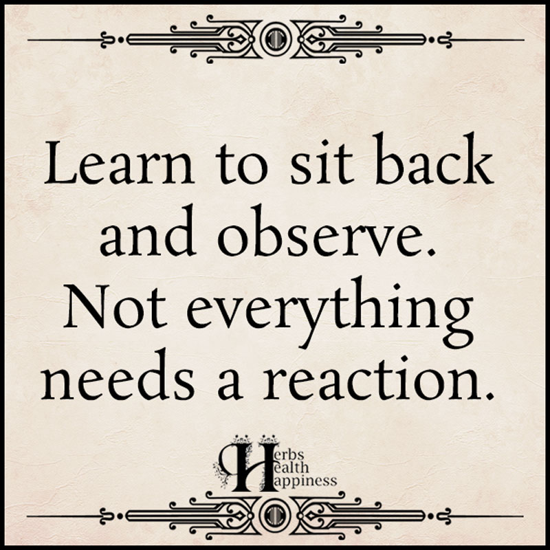 Learn To Sit Back And Observe