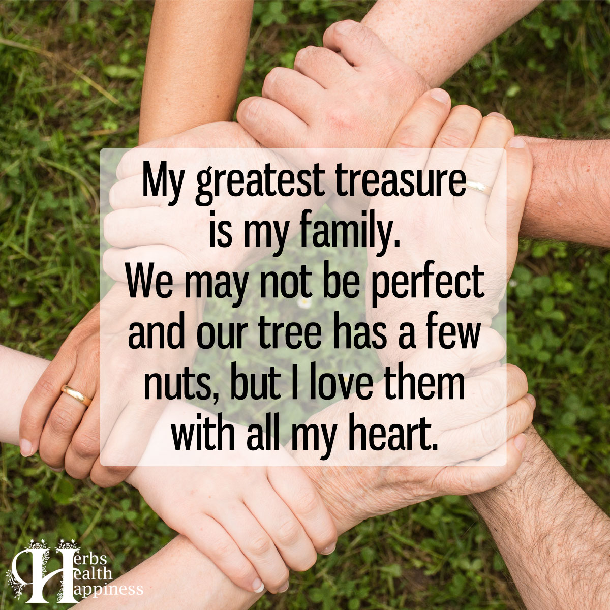 My Greatest Treasure Is My Family