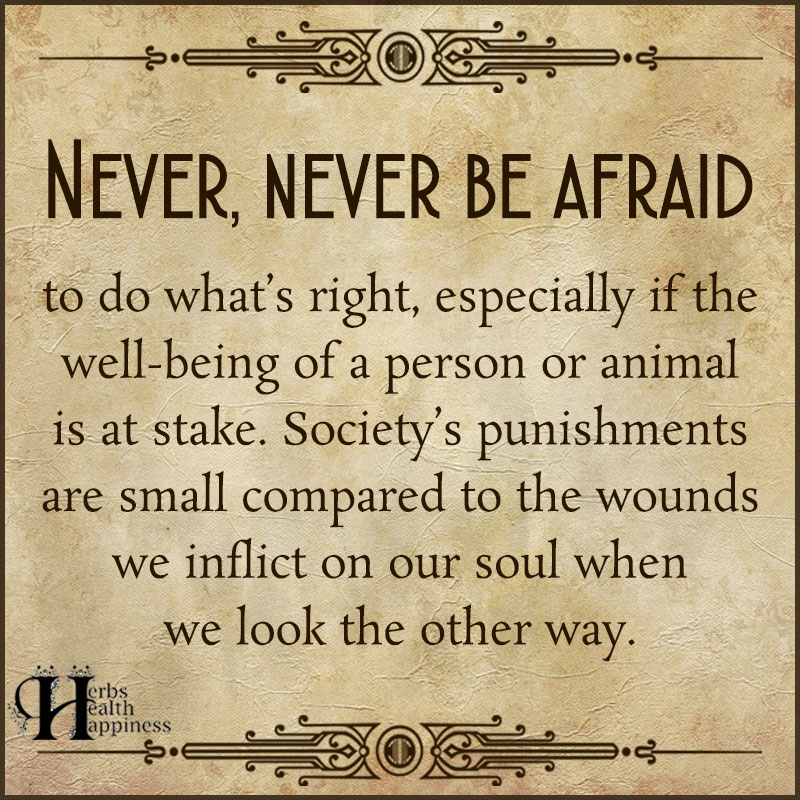 Never Never Be Afraid To Do Whats Right