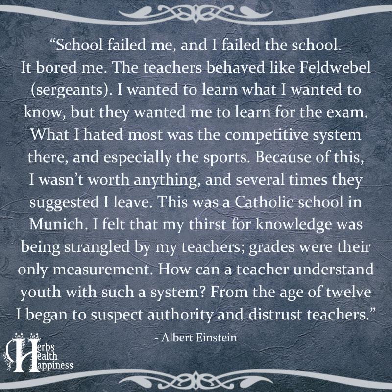 School Failed Me And I Failed The School