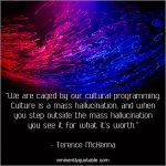 We Are Caged by Our Cultural Programming