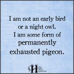 I Am Not An Early Bird Or A Night Owl