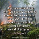 I Don't Understand Why When We Destroy Something Created By Man We Call It Vandalism