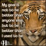 My Goal Is Not To Be Better Than Anyone Else