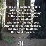 Trees Are Like Good People Who Care For Others