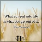 What You Put Into Life Is What You Get Out Of It
