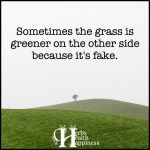 Sometimes The Grass Is Greener